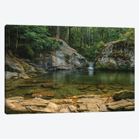 Pooling Canvas Print #LRH80} by Louis Ruth Canvas Art