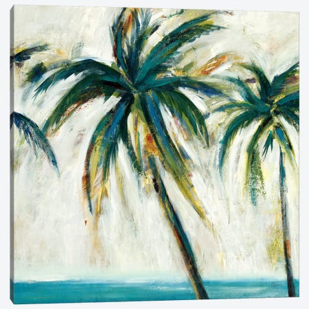 Palms I 3-Piece Canvas #LRI108} by Lisa Ridgers Canvas Print