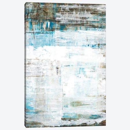 Beach Glass Canvas Print #LRI128} by Liz Jardine Canvas Art Print