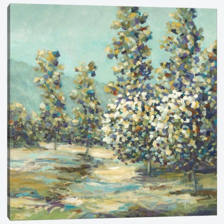 Modern Views VI Canvas Print #LRI129} by Lisa Ridgers Art Print