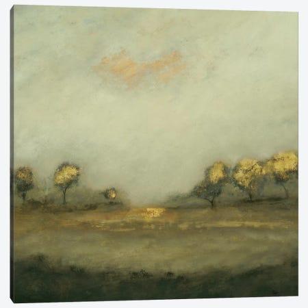 Calm Scape I Canvas Print #LRI185} by Lisa Ridgers Canvas Artwork