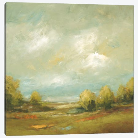 Summer Fields IV Canvas Print #LRI201} by Lisa Ridgers Canvas Wall Art