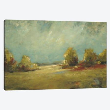 Summer's Passage Canvas Print #LRI202} by Lisa Ridgers Canvas Art