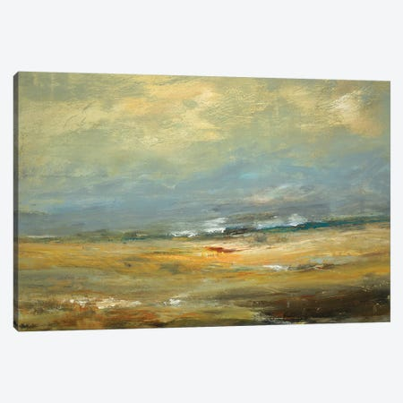 Sunlit Land Canvas Print #LRI203} by Lisa Ridgers Canvas Art