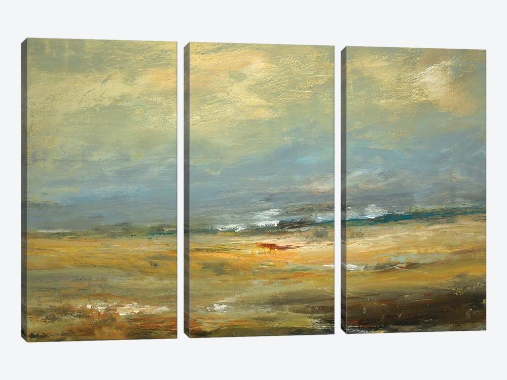 Sunlit Land by Lisa Ridgers 3-piece Canvas Art