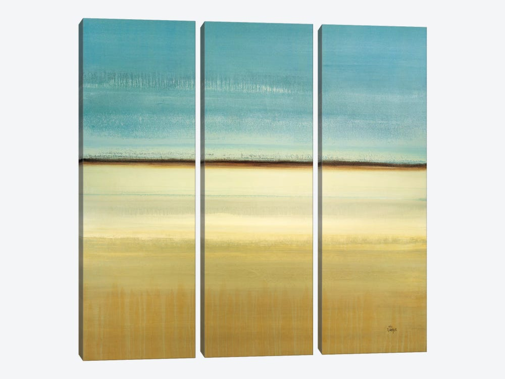 Day's Memoir by Lisa Ridgers 3-piece Canvas Artwork