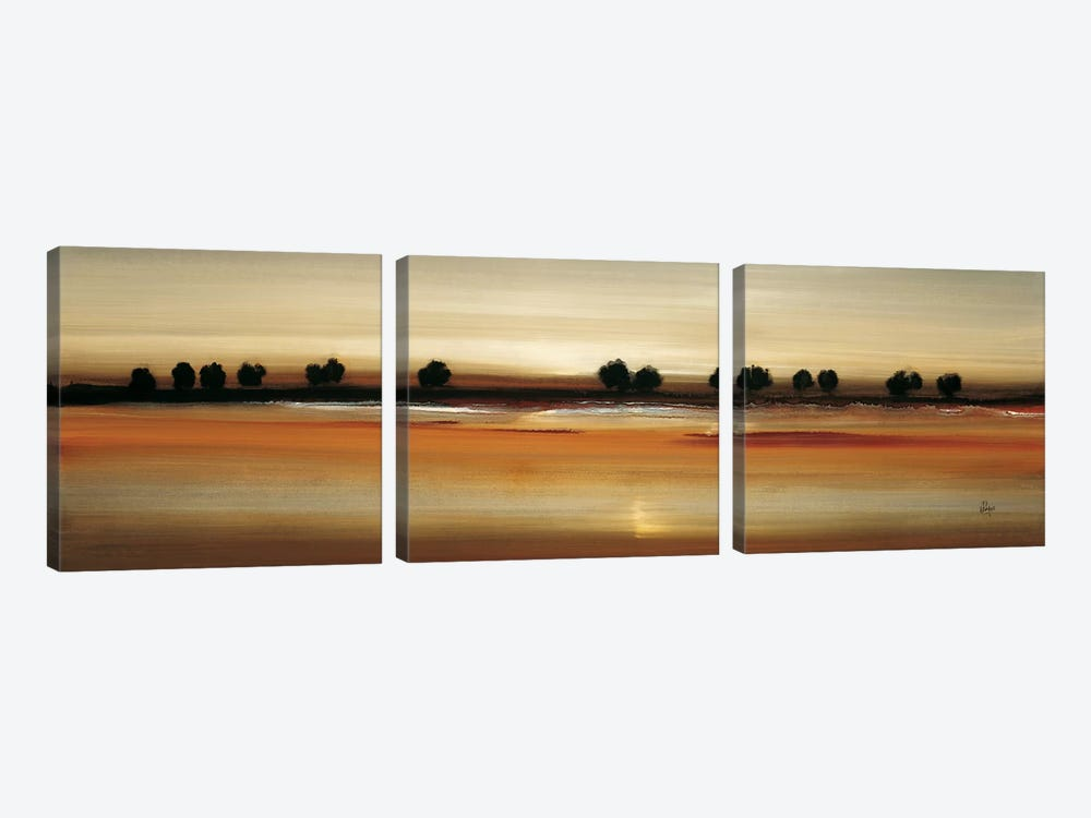Golden Plains by Lisa Ridgers 3-piece Canvas Print