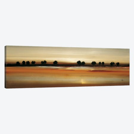 Golden Plains Canvas Print #LRI34} by Lisa Ridgers Canvas Art Print