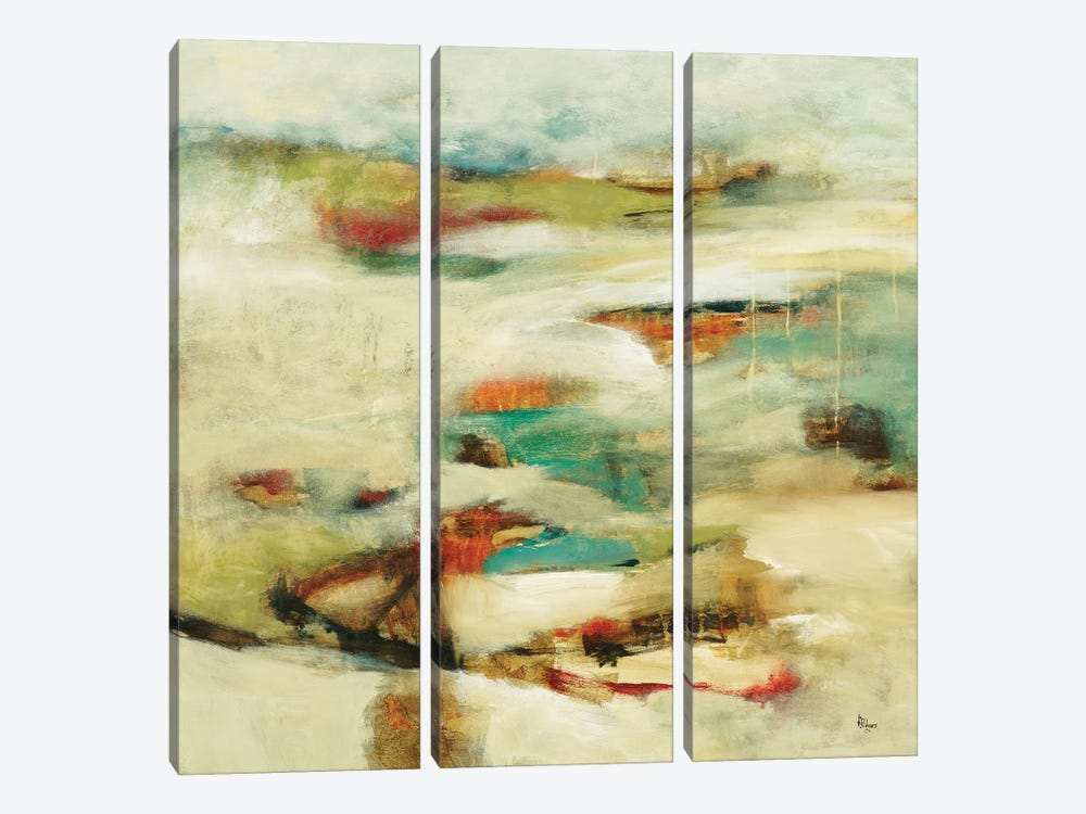New Perspective by Lisa Ridgers 3-piece Canvas Art Print