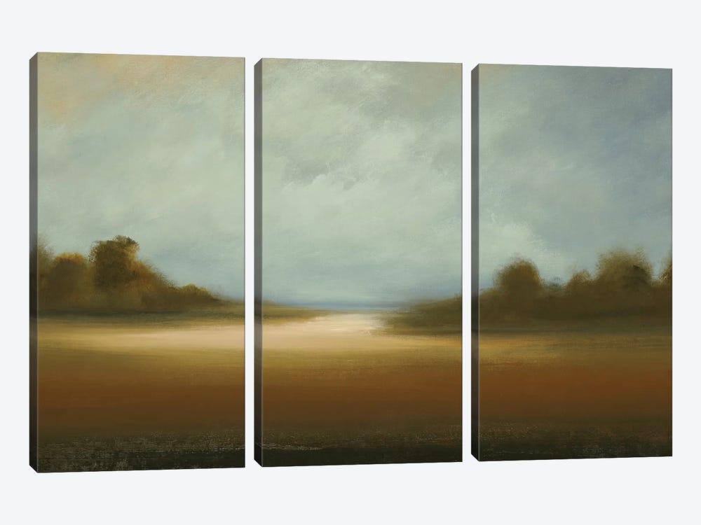 Peaceful Vista by Lisa Ridgers 3-piece Canvas Artwork