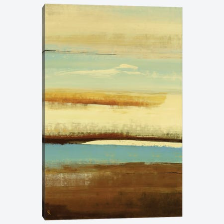 Plane View Canvas Print #LRI52} by Lisa Ridgers Canvas Wall Art