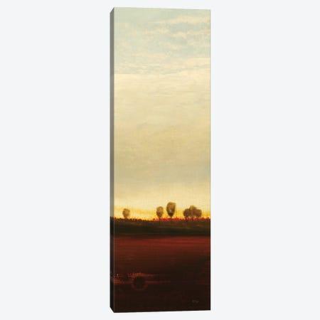 Summer's End I Canvas Print #LRI65} by Lisa Ridgers Canvas Artwork