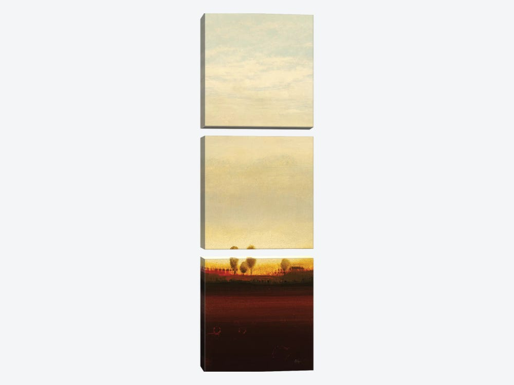 Summer's End II by Lisa Ridgers 3-piece Canvas Artwork