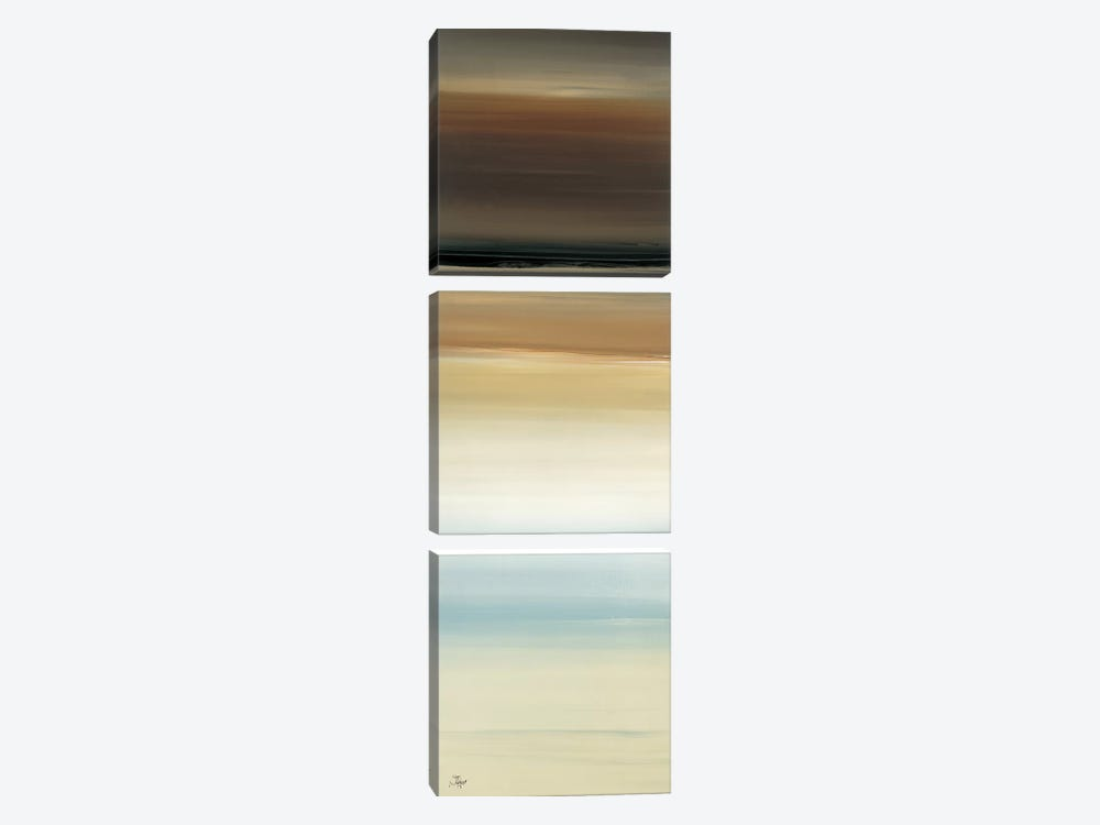 Calm Thoughts Surround II by Lisa Ridgers 3-piece Canvas Print