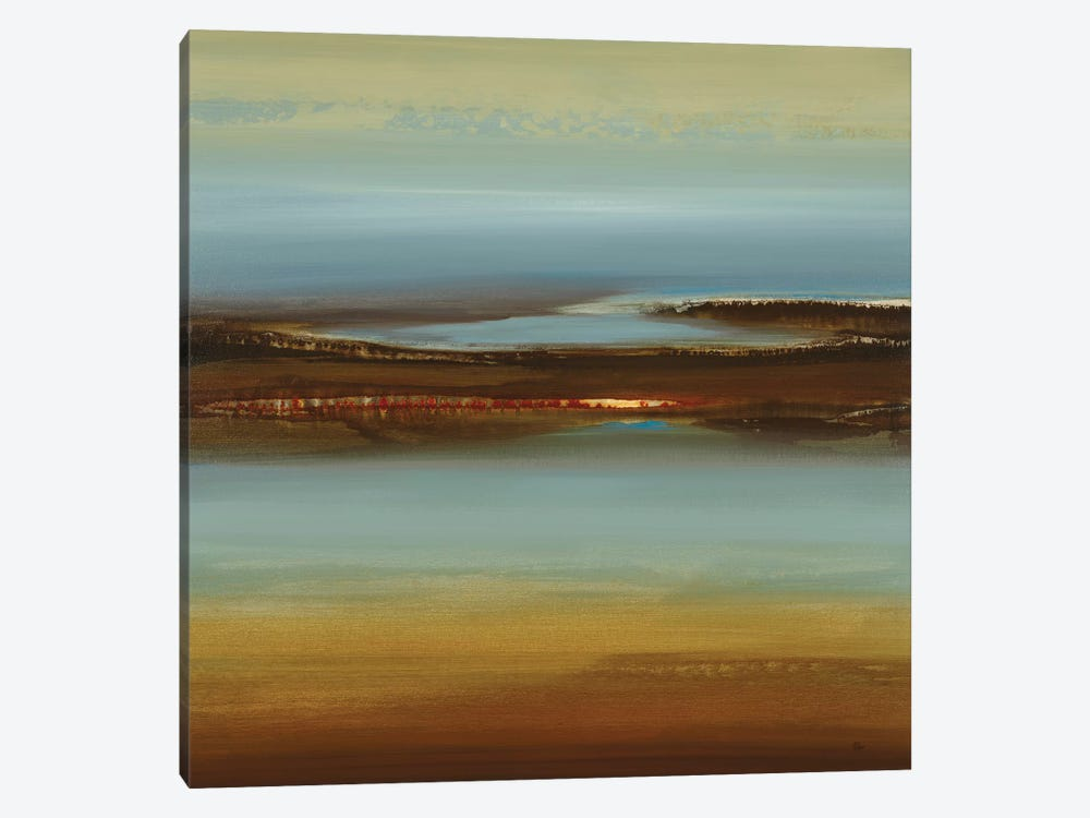 Zen Land by Lisa Ridgers 1-piece Canvas Artwork