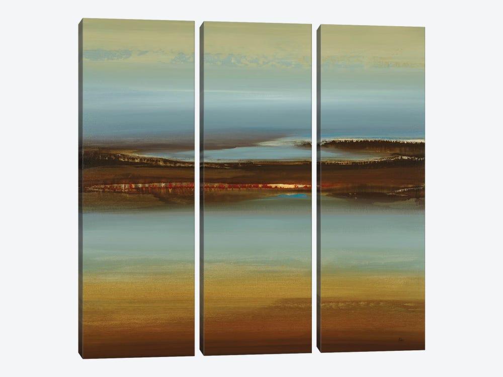 Zen Land by Lisa Ridgers 3-piece Canvas Art