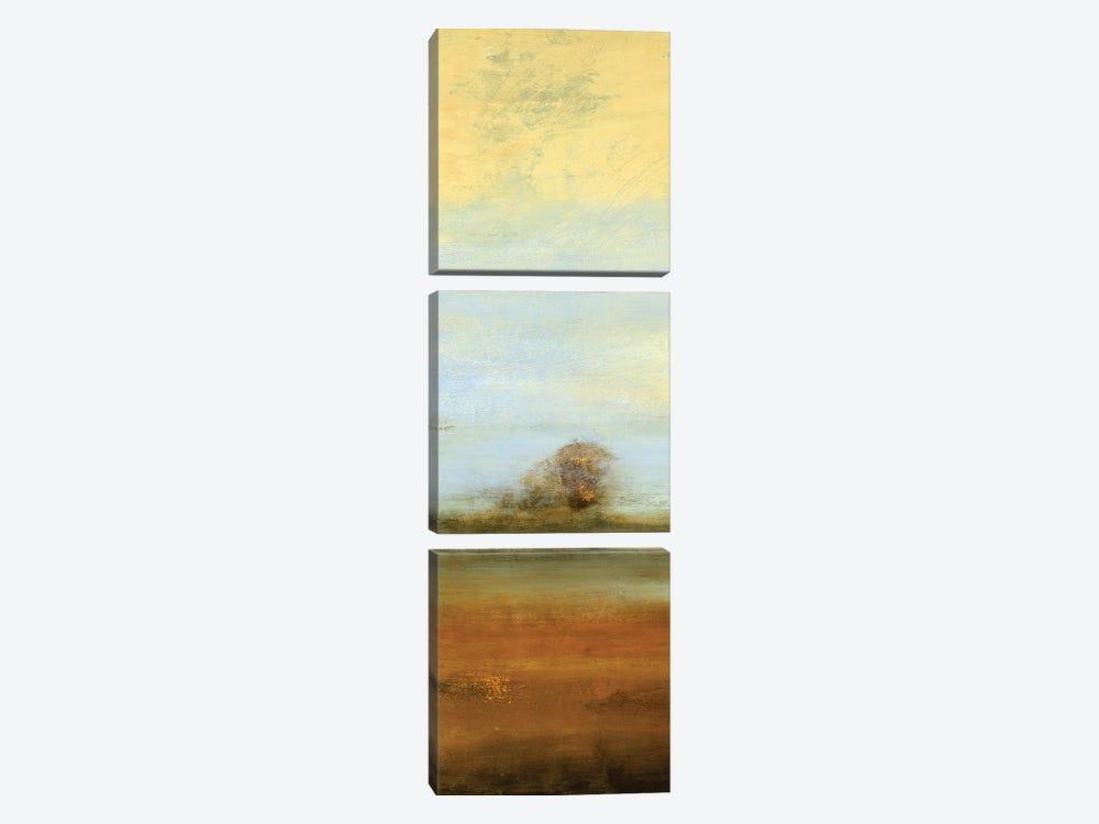 Contemporary Scene I by Lisa Ridgers 3-piece Canvas Art Print