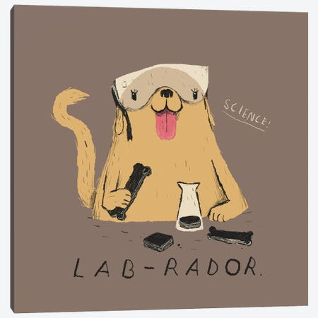Labrador Canvas Print #LRO29} by Louis Roskosch Canvas Art Print