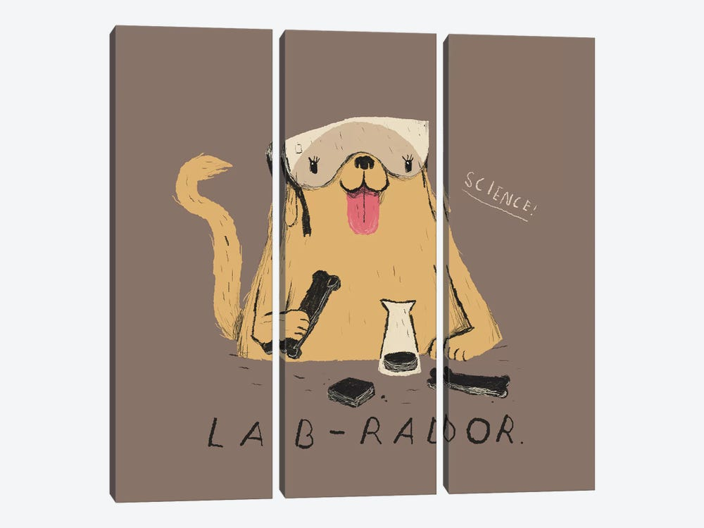 Labrador by Louis Roskosch 3-piece Canvas Print