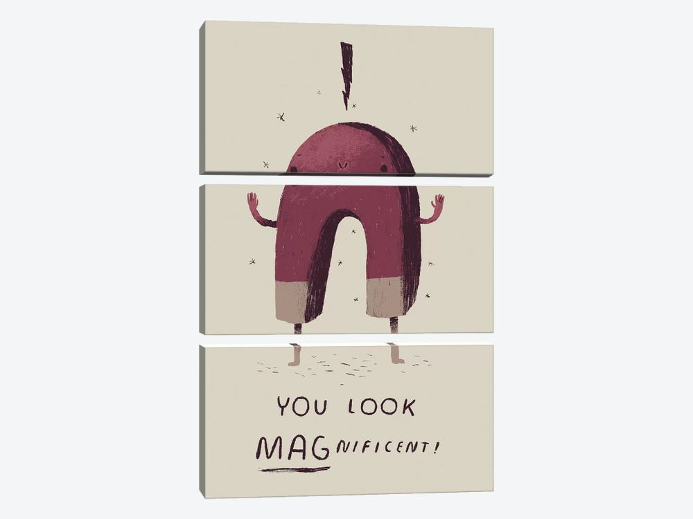 Magnetficent by Louis Roskosch 3-piece Canvas Wall Art