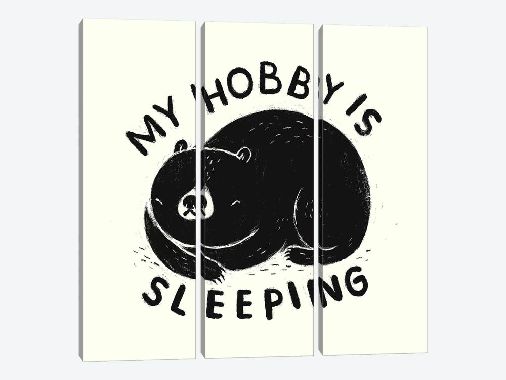 My Hobby Is Sleeping by Louis Roskosch 3-piece Canvas Wall Art