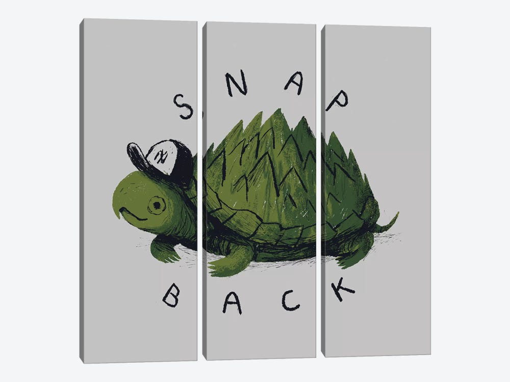 Snap Back by Louis Roskosch 3-piece Canvas Art