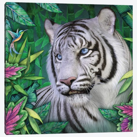 White Tiger Canvas Print #LRP151} by Laurie Prindle Art Print