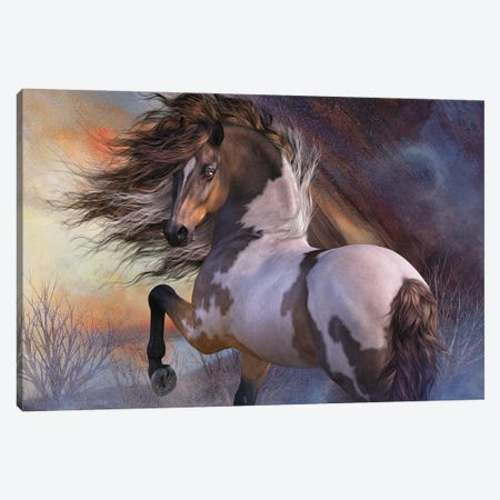 Wild Stallion Canvas Print #LRP155} by Laurie Prindle Canvas Artwork