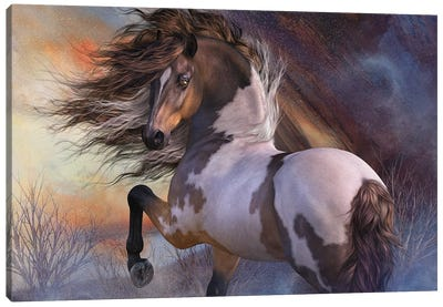 Wild Stallion Canvas Art Print