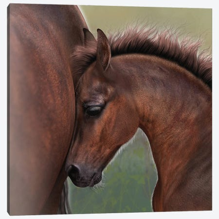 A Moment In Time Canvas Print #LRP1} by Laurie Prindle Canvas Artwork