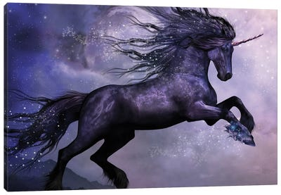 Dance Of The Black Unicorn Canvas Art Print
