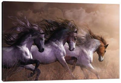 Run To Freedom Canvas Art Print