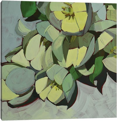 Paper White Canvas Art Print