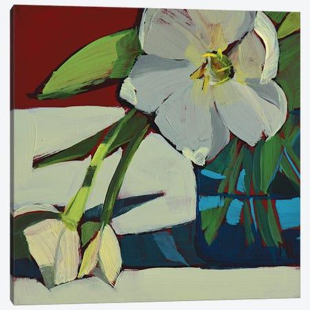 Three White Tulips Canvas Print #LRS22} by Mónica Linares Art Print