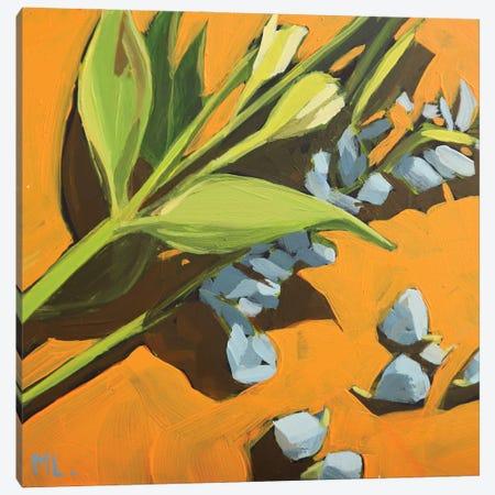 Orange Background Canvas Print #LRS40} by Mónica Linares Canvas Art Print