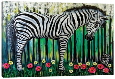 Little Zebra Canvas Art Print