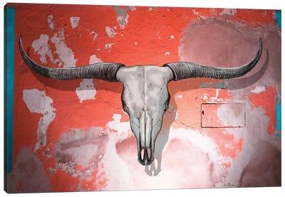 Longhorn Skull Wall Canvas Art Print