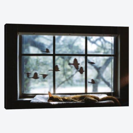 Chasing A Dream Canvas Print #LRU57} by Doug LaRue Canvas Print