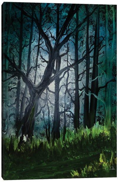 Dark Forest Glow Canvas Art Print