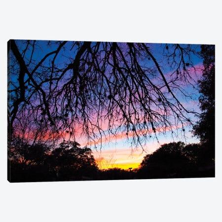 Pastel Sunset Silhouette II Canvas Print #LRU69} by Doug LaRue Canvas Print