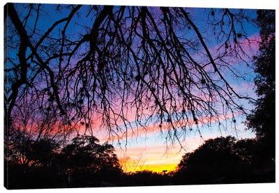 Pastel Sunset Silhouette II Canvas Art Print