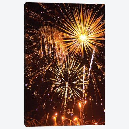 Fireworks XCV Canvas Print #LRU7} by Doug LaRue Canvas Wall Art