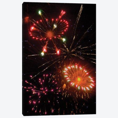 Fireworks X Canvas Print #LRU9} by Doug LaRue Canvas Print