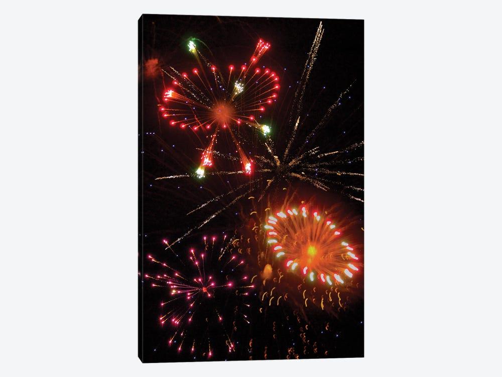 Fireworks X by Doug LaRue 1-piece Canvas Artwork