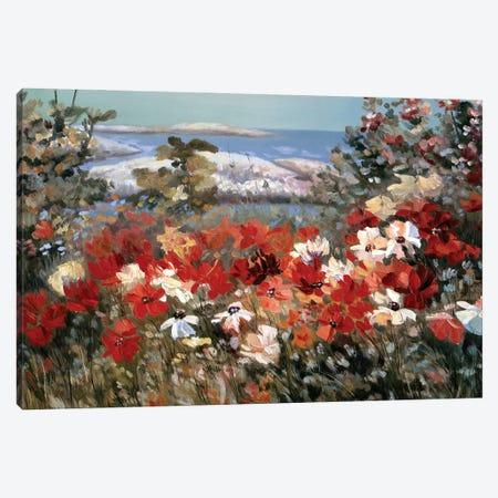 Funny Meadow Canvas Print #LRV15} by Larisa Lavrova Canvas Artwork