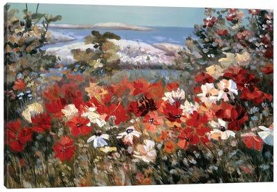 Funny Meadow Canvas Art Print