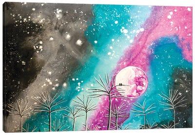 Wondrous Night Canvas Art Print