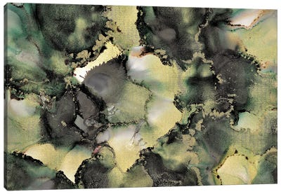 Essence Of Ebony Canvas Art Print