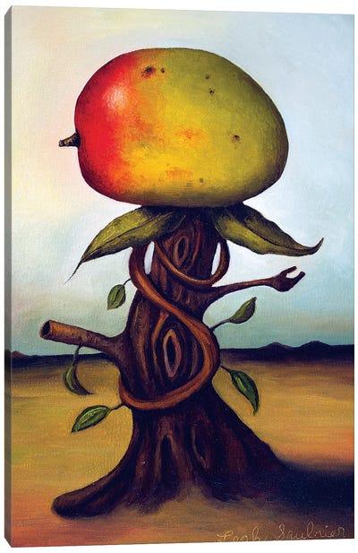 Mango Fruit Tree Canvas Art Print