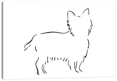 Short Haired Yorkshire Terrier Canvas Art Print